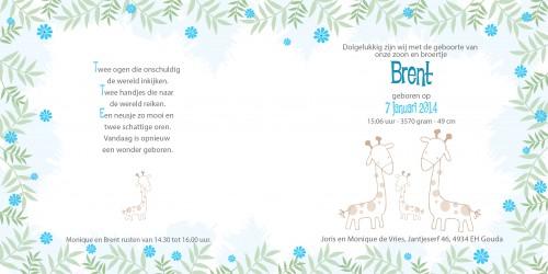 Geboortekaarten: Brent binnenzijdes