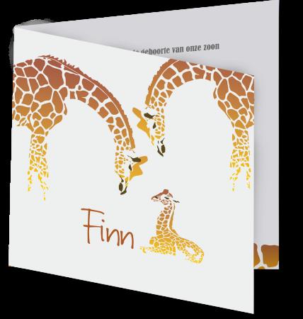 Geboortekaart Finn 3D