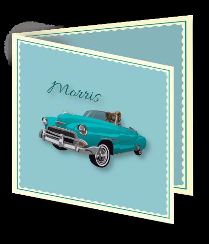 Geboortekaart Morris 3D