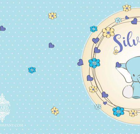 Geboortekaart Silvester voor/achterzijde